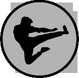 icon-member-pro